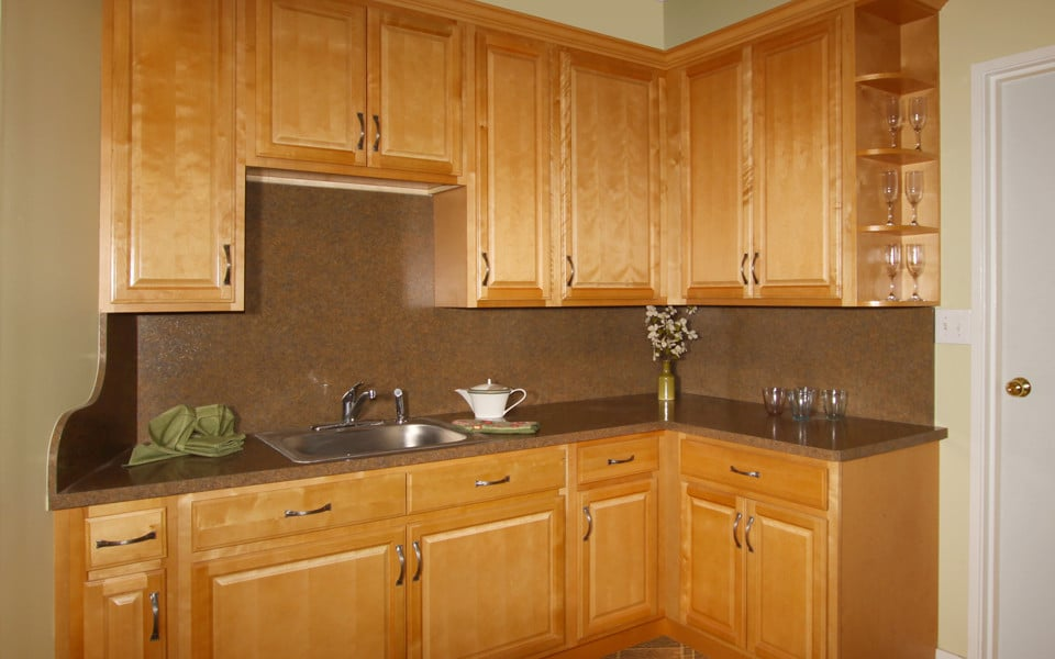 Fabuwood Birch Natural1 Stock Kitchen Cabinets